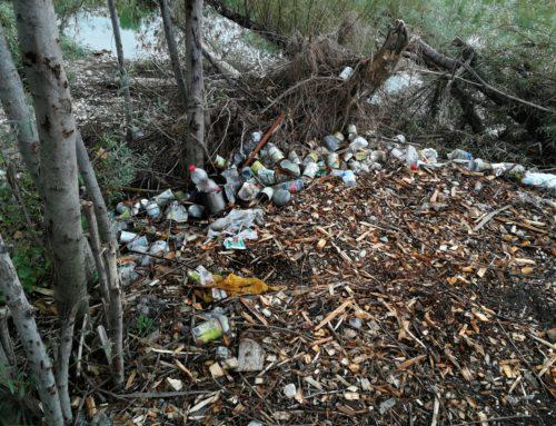 Fare Verde Monfalcone ritrova altri rifiuti lungo l'Isonzo
