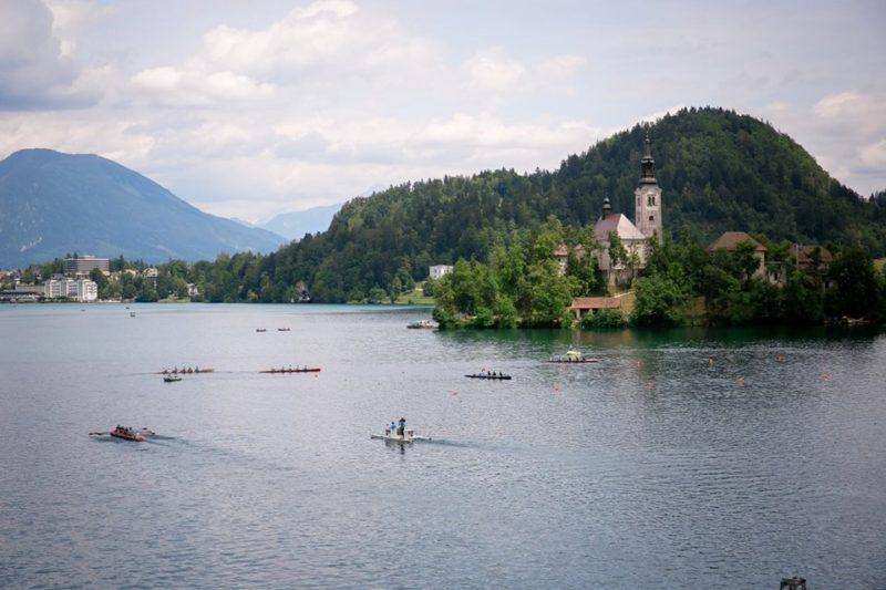 wrmr_bled