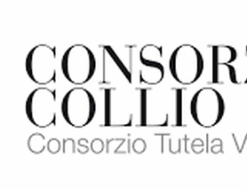 – Enjoy Collio Time, La vendemmia 2017, Collio Day 2017 – Conferenza Stampa