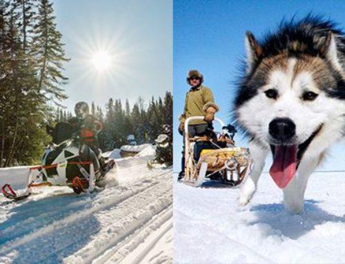 – Proposte vacanze invernali – Turismo attivo con  Visitait.it