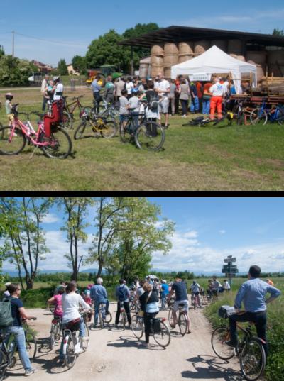 Ciclofestival Udine Copertina