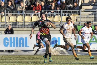 zebre rugby in sudafrica