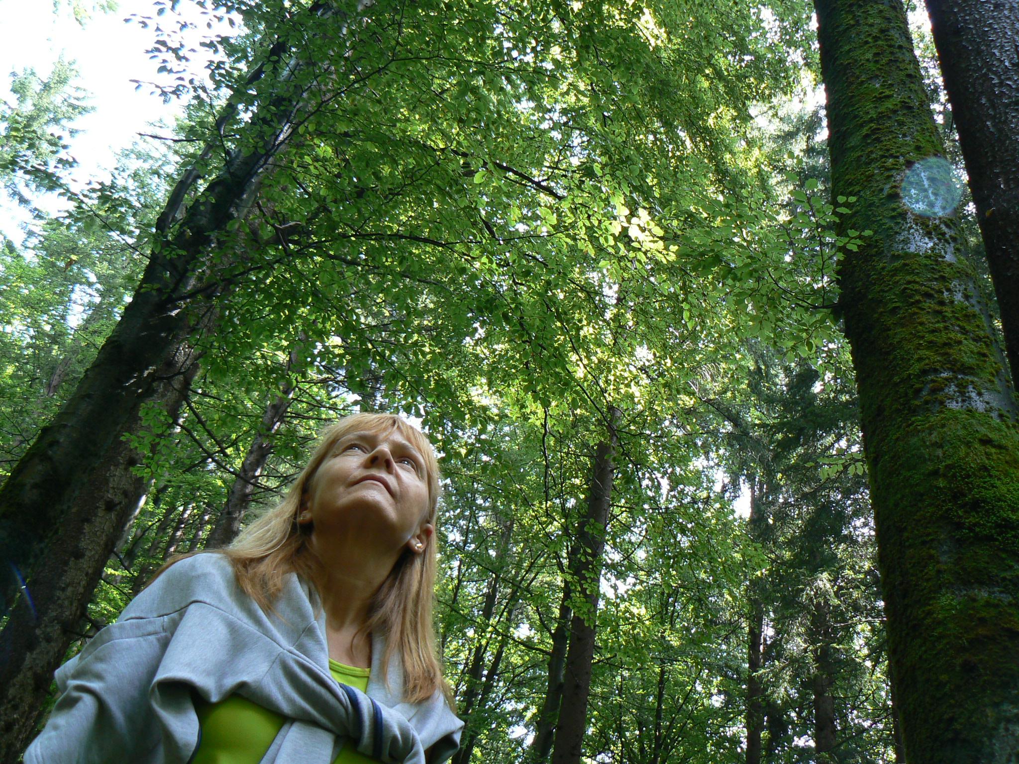 Shinrin Yoku ovvero il mio primo bagno nella foresta