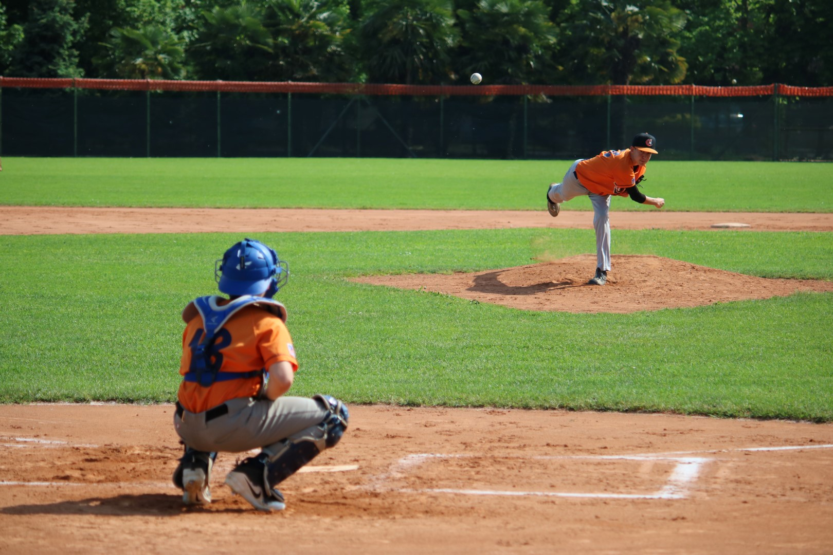 Baseball Tigers Dotti_Lorenzo_Serra_Alessandro